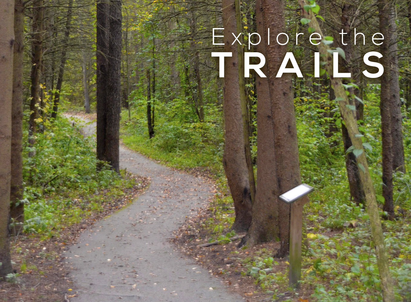 Explore the Trails