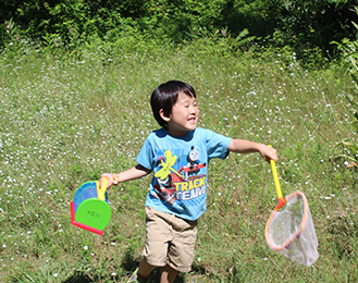 Preschool Insect Camp at Harris Nature Center