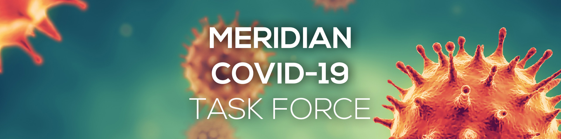 Meridian Coronavirus Task Force secondary website page banner