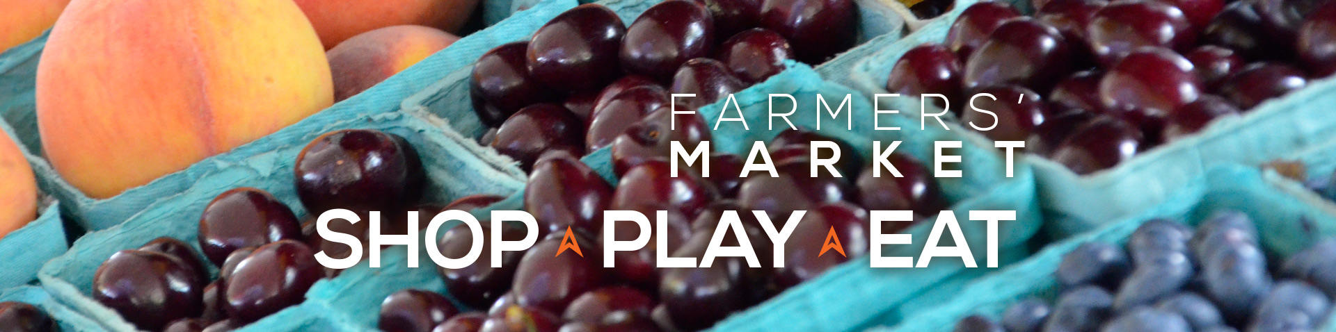 Farmers Market graphics homepage banner